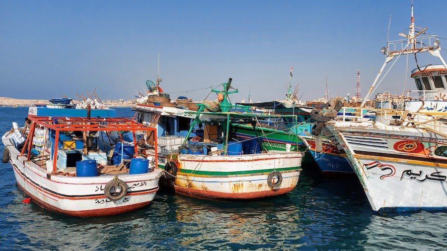 Fishing boats in the main port